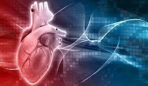 Carditonus Asia - สำหรับความดันโลหิตสูง – พัน ทิป – หา ซื้อ ได้ ที่ไหน – lazada